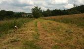 Trail Walk Yvoir - Boucle Godinne Mont chemins publics - Photo 14