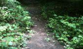 Trail Walk Yvoir - Boucle Godinne Mont chemins publics - Photo 10