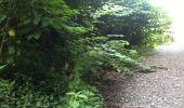 Trail Walk Yvoir - Boucle Godinne Mont chemins publics - Photo 9