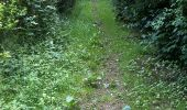 Trail Walk Yvoir - Boucle Godinne Mont chemins publics - Photo 7