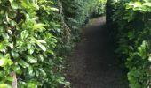 Trail Walk Yvoir - Boucle Godinne Mont chemins publics - Photo 6