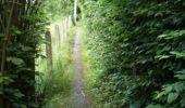 Trail Walk Yvoir - Boucle Godinne Mont chemins publics - Photo 5