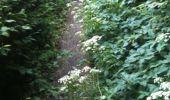 Trail Walk Yvoir - Boucle Godinne Mont chemins publics - Photo 4