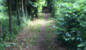 Trail Walk Yvoir - Boucle Godinne Mont chemins publics - Photo 2