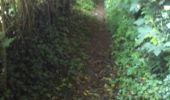 Trail Walk Yvoir - Boucle Godinne Mont chemins publics - Photo 1