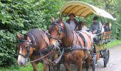 Trail Cycle Marche-en-Famenne - Les Crêtes : variante 1 - Photo 41