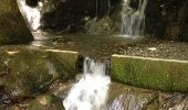Trail Walk GRUST - pyrenees - Photo 13