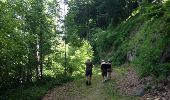 Trail Walk GRUST - pyrenees - Photo 11