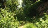 Trail Walk GRUST - pyrenees - Photo 7
