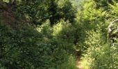Trail Walk GRUST - pyrenees - Photo 6
