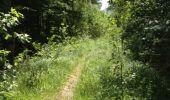 Trail Walk GRUST - pyrenees - Photo 4