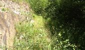 Trail Walk GRUST - pyrenees - Photo 3