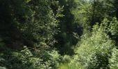 Trail Walk GRUST - pyrenees - Photo 31