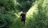 Trail Walk GRUST - pyrenees - Photo 30