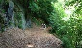 Trail Walk GRUST - pyrenees - Photo 20