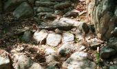 Randonnée Marche COLOMBIERES-SUR-ORB - Les gorges de Colombières - retour sentier des Fleysses - Photo 6