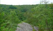 Trail Walk Bouillon - De Poupehan à Frahan par le sentier des crêtes - Photo 2