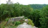 Trail Walk Bouillon - De Poupehan à Frahan par le sentier des crêtes - Photo 4