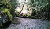 Trail Walk VILLARD-SAINT-SAUVEUR - gorges du flumen - Photo 2