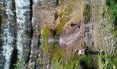Trail Walk VILLARD-SAINT-SAUVEUR - gorges du flumen - Photo 1