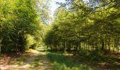 Randonnée Marche Florenville - Les Epioux. Natura 2000, des sites qui valent le détour ! Lx 2 - Photo 11