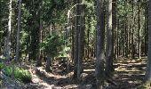 Randonnée Marche Florenville - Les Epioux. Natura 2000, des sites qui valent le détour ! Lx 2 - Photo 8
