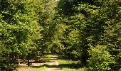 Randonnée Marche Florenville - Les Epioux. Natura 2000, des sites qui valent le détour ! Lx 2 - Photo 9