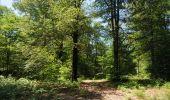 Trail Walk Florenville - Les Epioux. Natura 2000, des sites qui valent le détour ! Lx 2 - Photo 2