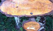 Randonnée Marche AUBAZINES - le lac du Coiroux et son Golf - Photo 2