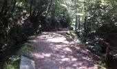Trail Walk AUBAZINES - du Lac du Coiroux au canal des moines  - Photo 1