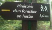 Trail Walk LOCQUIGNOL - pâture d'Haisne www.foretdemormal.fr - Photo 7