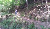 Trail Walk BITSCHWILLER-LES-THANN - Bitschwiller les Thann  - Photo 11