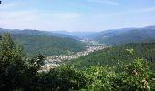Trail Walk BITSCHWILLER-LES-THANN - Bitschwiller les Thann  - Photo 7