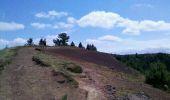 Trail Walk AYDAT - puy de la vache maison des Volcans - Photo 10