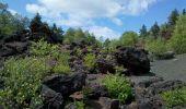 Trail Walk AYDAT - puy de la vache maison des Volcans - Photo 6