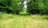 Trail Walk LONGPONT - en forêt de Retz_8_Longpont_les tetes de Chavigny_AR - Photo 20