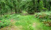 Trail Walk LONGPONT - en forêt de Retz_8_Longpont_les tetes de Chavigny_AR - Photo 24