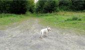 Trail Walk LONGPONT - en forêt de Retz_8_Longpont_les tetes de Chavigny_AR - Photo 3