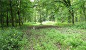 Trail Walk LONGPONT - en forêt de Retz_8_Longpont_les tetes de Chavigny_AR - Photo 11