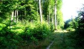 Trail Walk LONGPONT - en forêt de Retz_8_Longpont_les tetes de Chavigny_AR - Photo 6
