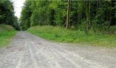 Trail Walk LONGPONT - en forêt de Retz_8_Longpont_les tetes de Chavigny_AR - Photo 16