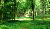 Trail Walk LONGPONT - en forêt de Retz_8_Longpont_les tetes de Chavigny_AR - Photo 28