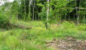 Trail Walk LONGPONT - en forêt de Retz_8_Longpont_les tetes de Chavigny_AR - Photo 4