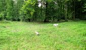 Trail Walk LONGPONT - en forêt de Retz_8_Longpont_les tetes de Chavigny_AR - Photo 18
