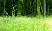 Trail Walk LONGPONT - en forêt de Retz_8_Longpont_les tetes de Chavigny_AR - Photo 21