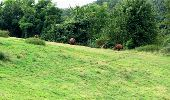 Trail Walk LONGPONT - en forêt de Retz_8_Longpont_les tetes de Chavigny_AR - Photo 13
