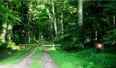 Trail Walk LONGPONT - en forêt de Retz_8_Longpont_les tetes de Chavigny_AR - Photo 5