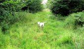 Trail Walk LONGPONT - en forêt de Retz_8_Longpont_les tetes de Chavigny_AR - Photo 19