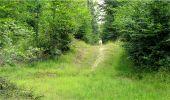 Trail Walk LONGPONT - en forêt de Retz_8_Longpont_les tetes de Chavigny_AR - Photo 15