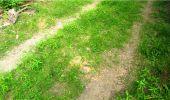 Trail Walk LONGPONT - en forêt de Retz_8_Longpont_les tetes de Chavigny_AR - Photo 8